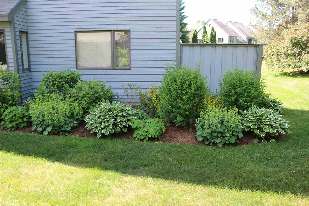 Landscaping 12234656