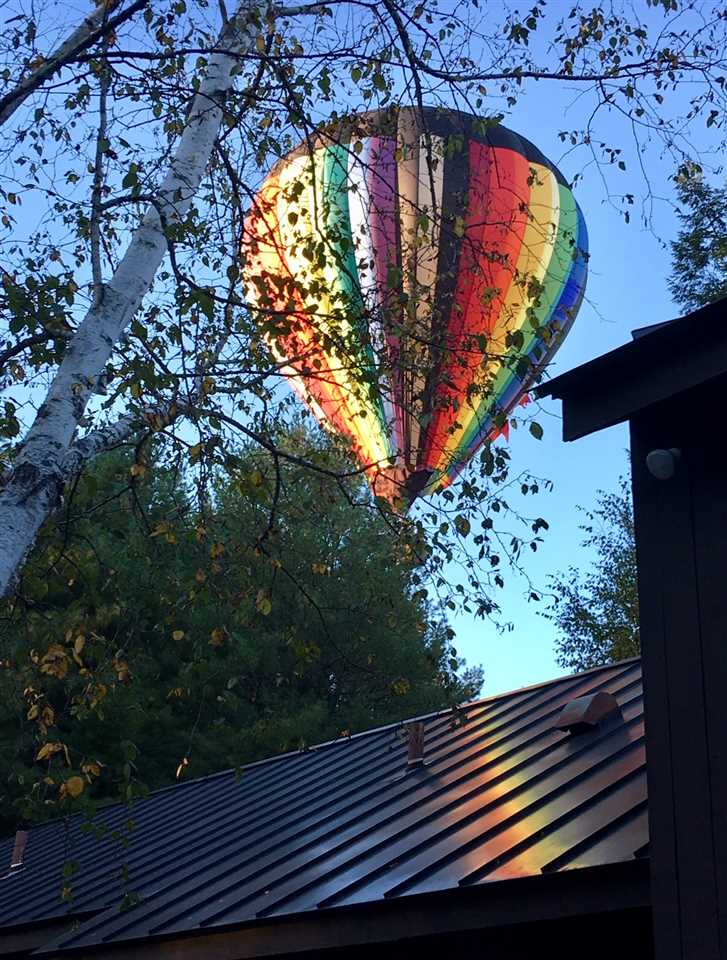 Balloons above Back Deck 12239955