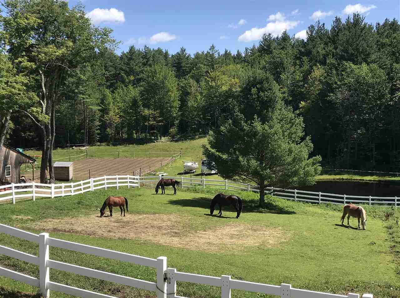 Dover VT Horse Farm | Property  on private pond