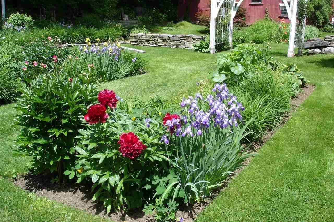 established gardens 12242540