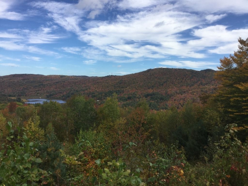 DORCHESTER NH LAND  for sale $$199,000 | 53.16 Acres  | Price Per Acre $0  | Total Lots 2