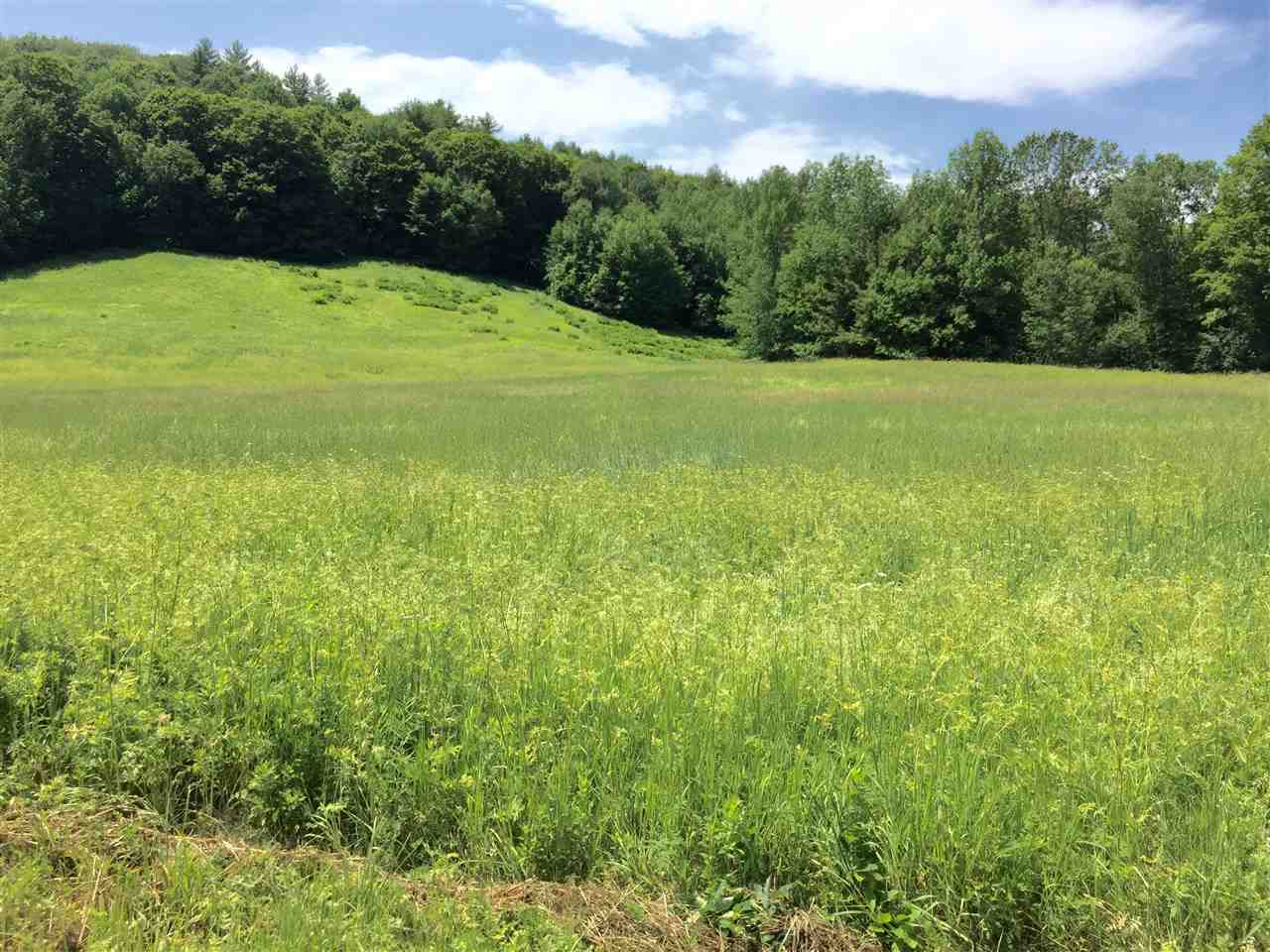 Woodstock VT Land  for sale $List Price is $175,000