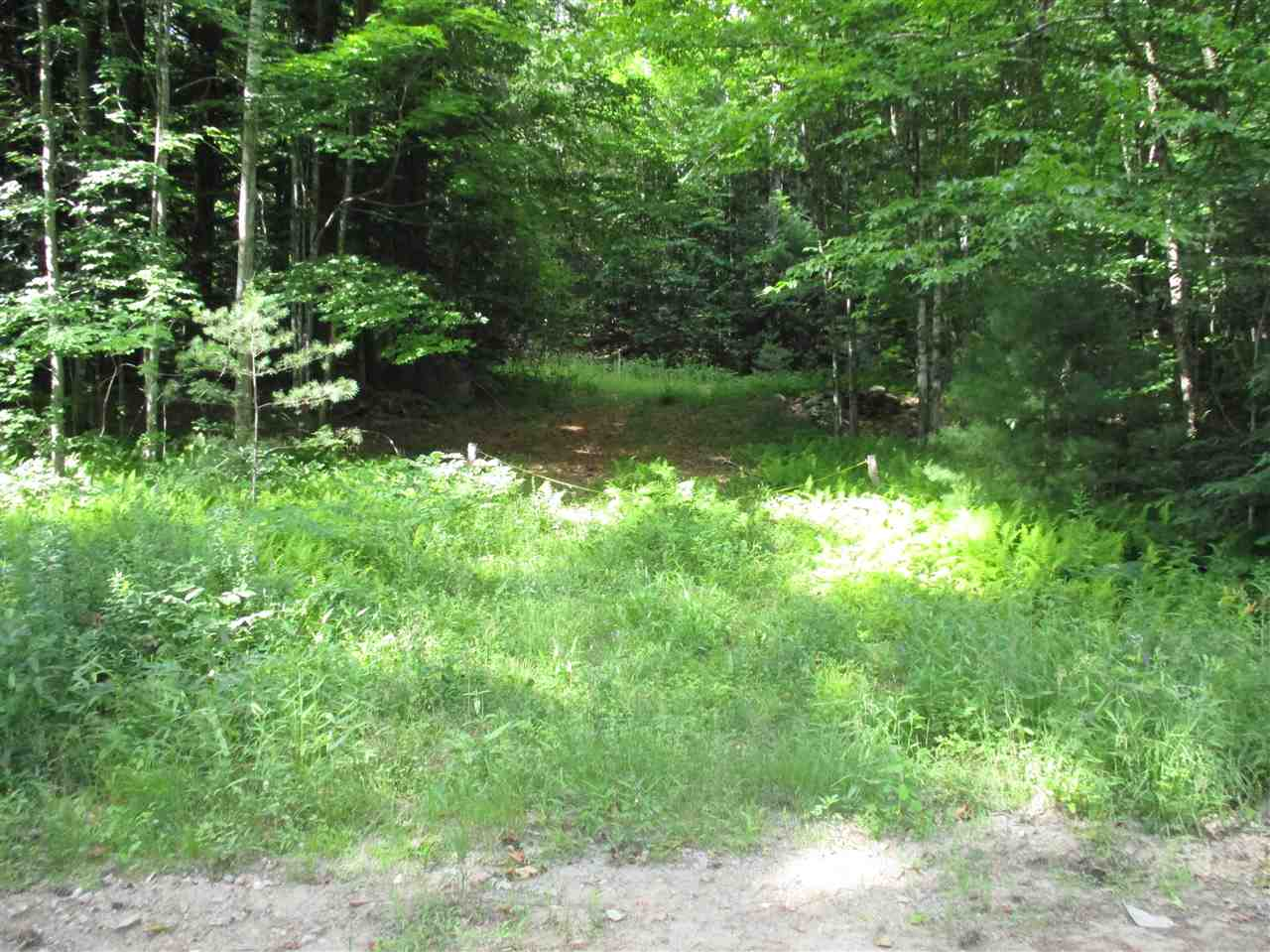 Large acreage building lot abutting Campton's Eastern Corner Road.  Driveway is already cut leading to two different homesite locations with excellent views off to the southwest.  The property has been surveyed and a septic system has been drawn up so the site is ready to build on.  The Owner's plans changed and they purchased an existing house so this property has become surplus to their needs.  Owner may be willing to take back paper for a credit worthy purchaser.  It is worth a look-see.  Broker is also a general contractor and can help you with building plans and construction.  Call for a personal showing and bring along your building plans.