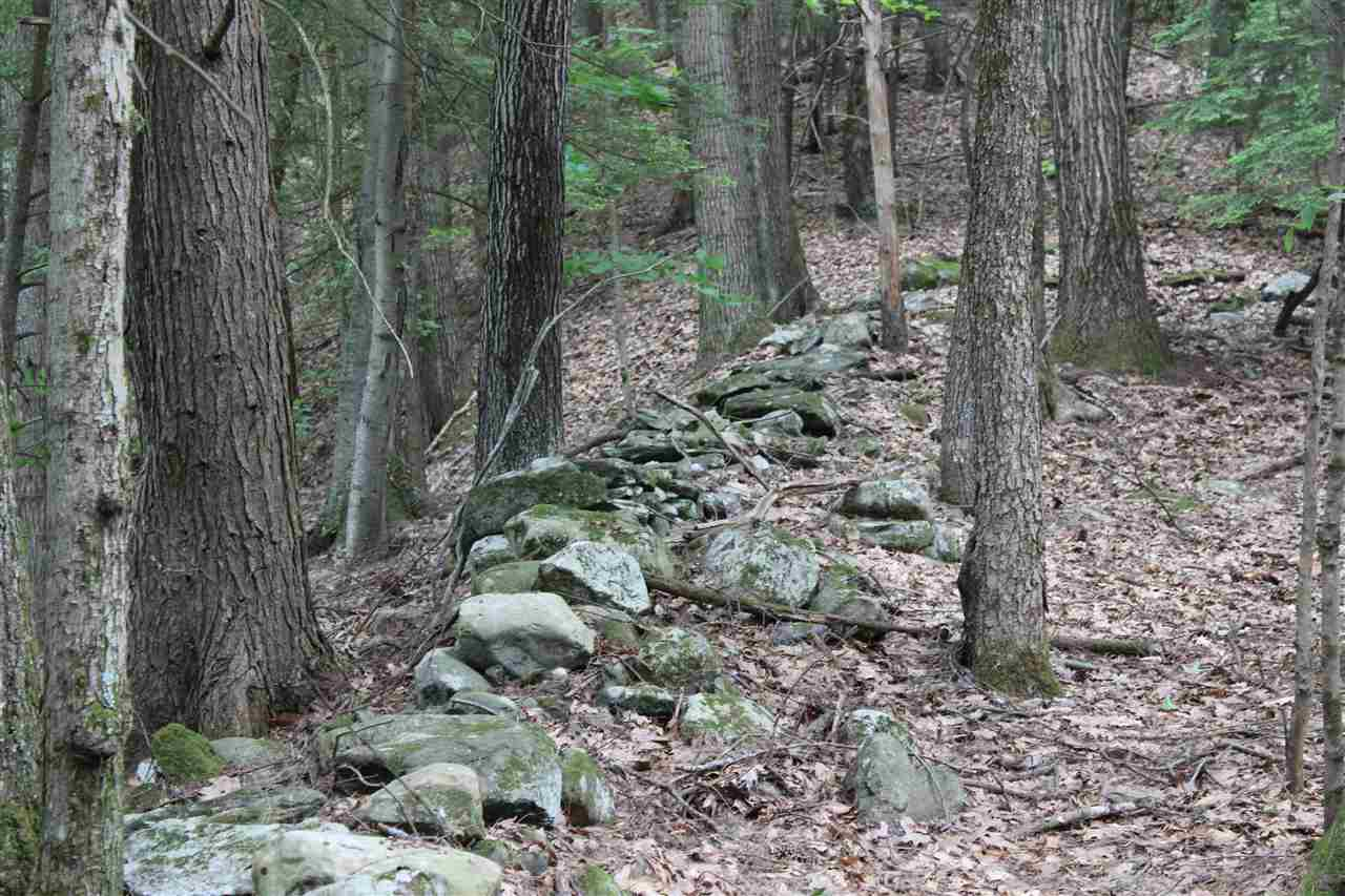 WESTMINSTER VT LAND  for sale $$42,000 | 10 Acres  | Price Per Acre $0
