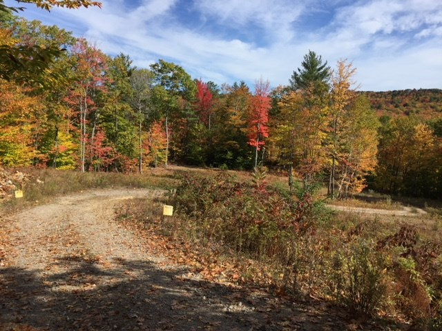 Photo of Map 126-027-004 Province Road Gilmanton NH 03237