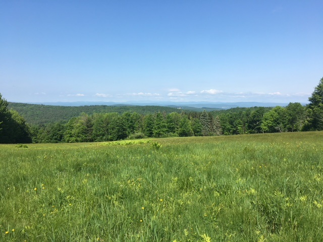 ENFIELD NH LAND  for sale $$149,000 | 23 Acres  | Price Per Acre $0  | Total Lots 2