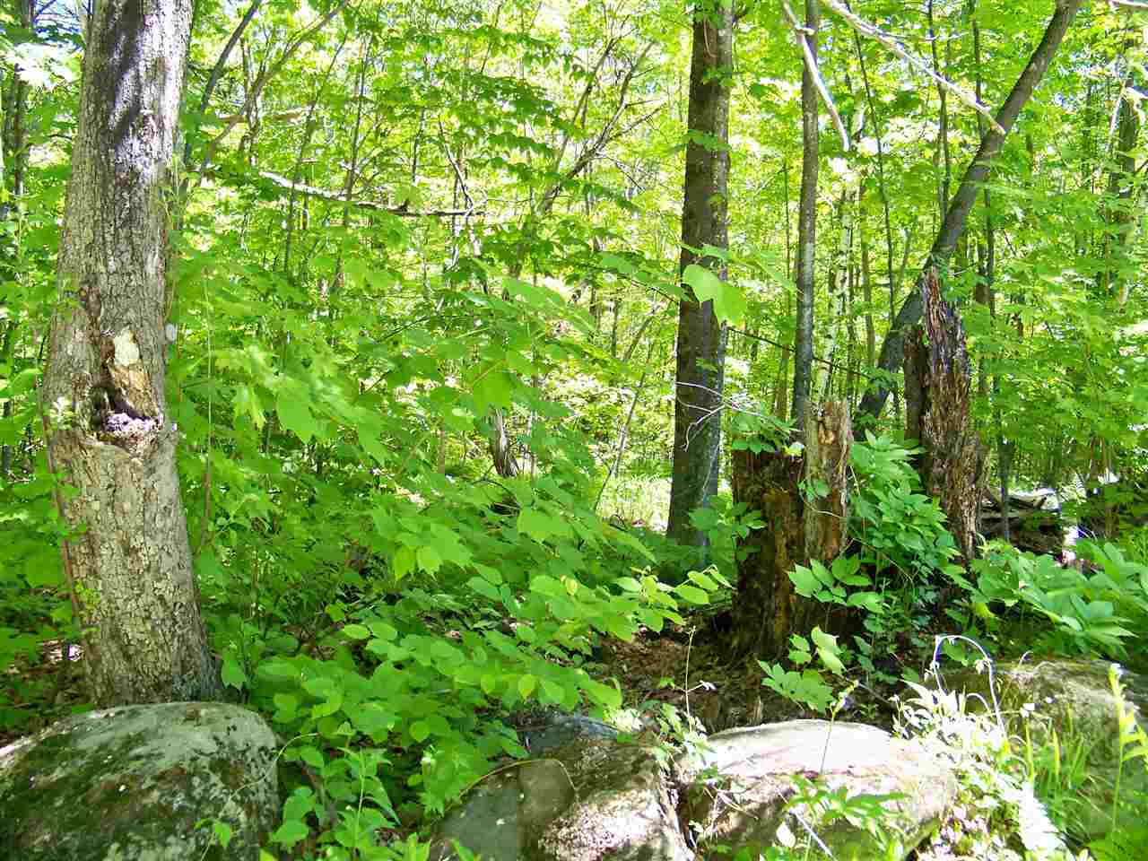GRAFTON NHLAND  for sale $$49,900 | 6.8 Acres  | Price Per Acre $0  | Total Lots 2