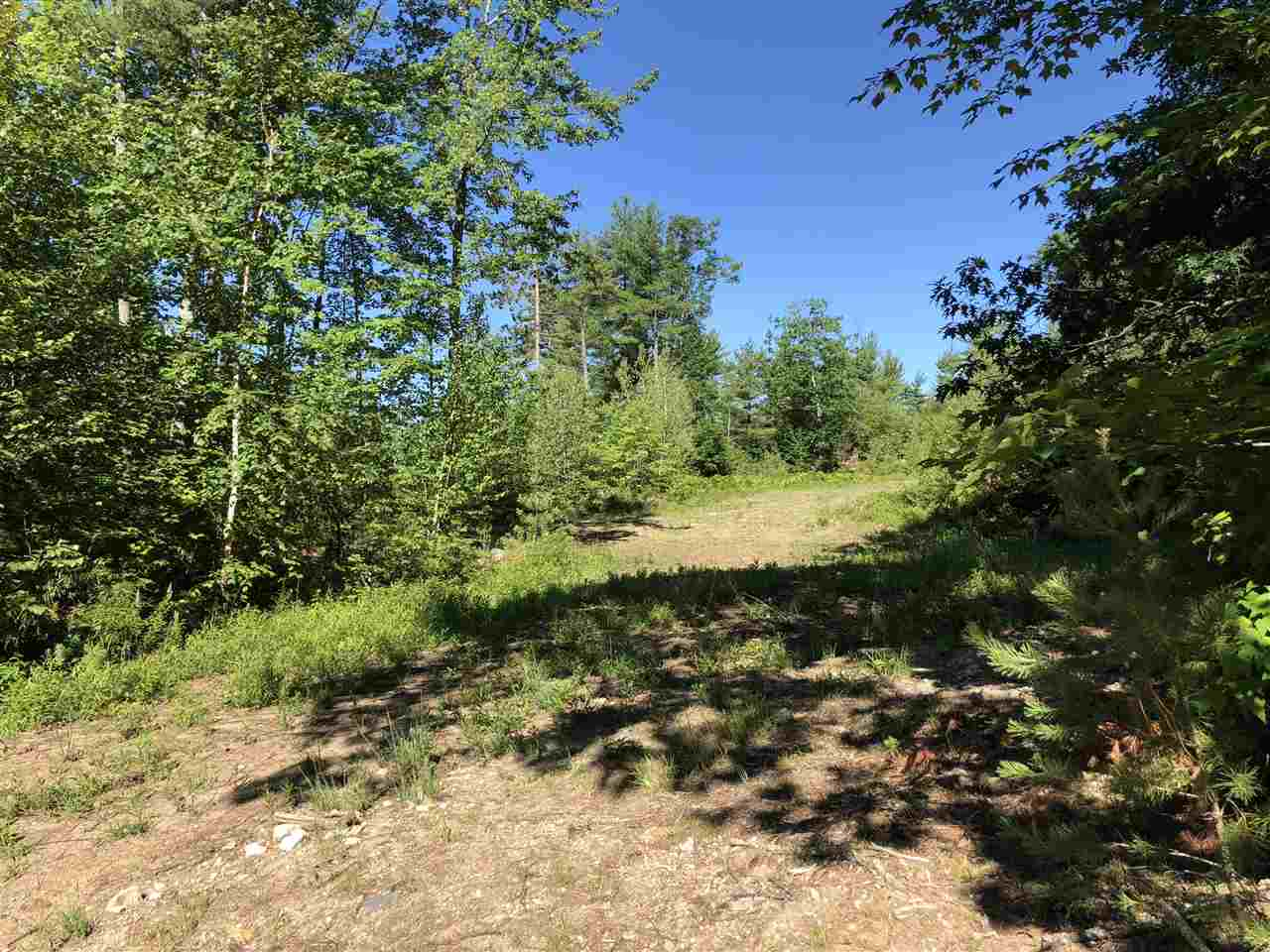 VILLAGE OF OSSIPEE VILLAGE NH IN TOWN OF OSSIPEE NH LAND  for sale $250,000