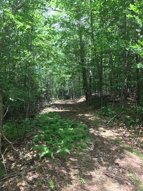 SPRINGFIELD VT LAND  for sale $$56,000 | 56.1 Acres  | Price Per Acre $0  | Total Lots 3