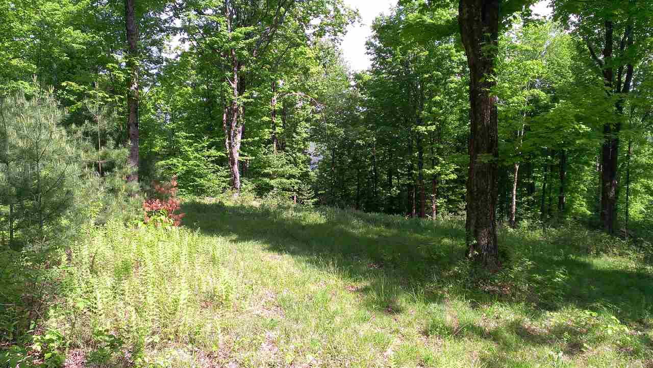 Langdon NH 03602 Land for sale $List Price is $79,500