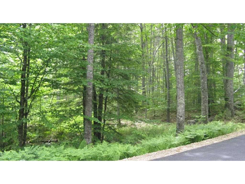 BARNSTEAD NH Land / Acres for sale
