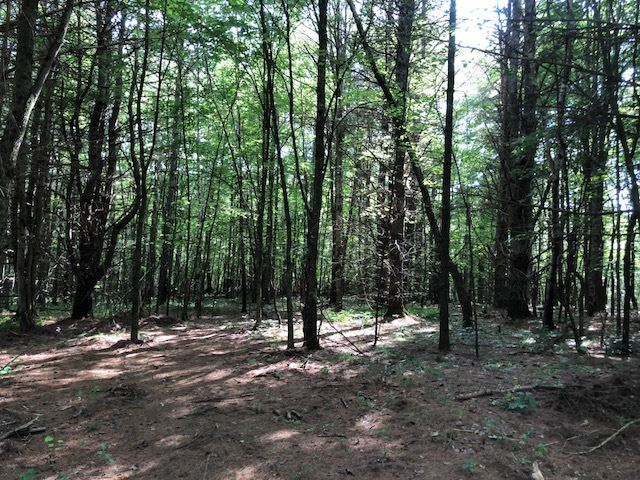 ENFIELD NH LAND  for sale $$94,800 | 5.013 Acres  | Price Per Acre $0  | Total Lots 2