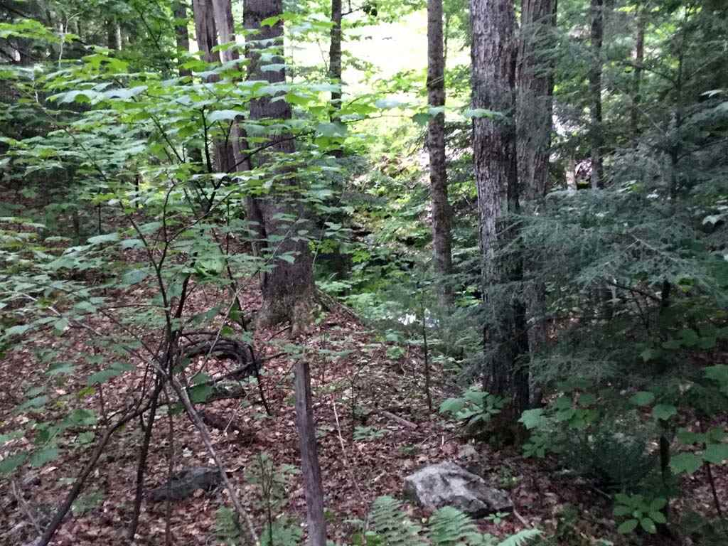 ALSTEAD NH LAND  for sale $$156,000 | 104 Acres  | Price Per Acre $0  | Total Lots 4