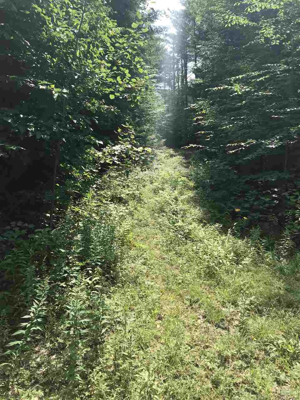 ALSTEAD NH LAND  for sale $$35,000 | 5 Acres  | Price Per Acre $0