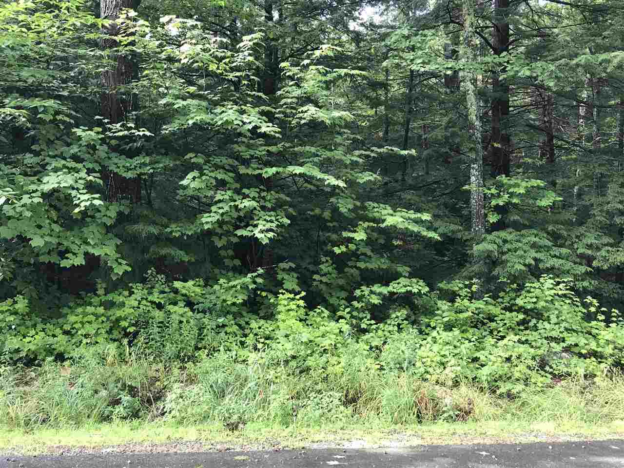 Washington NH 03280 Land for sale $List Price is $13,999