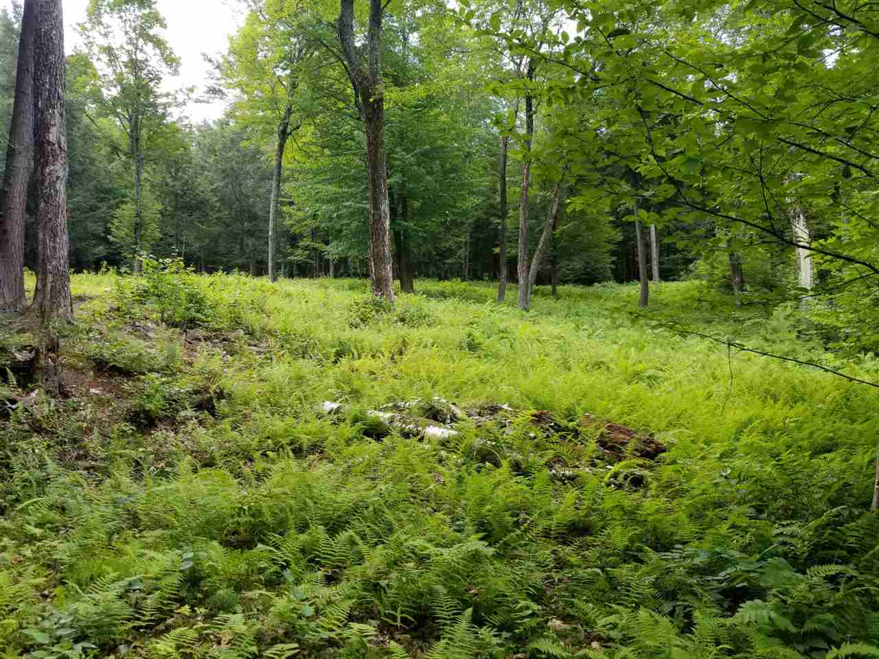Hartford VT Land  for sale $List Price is $59,000