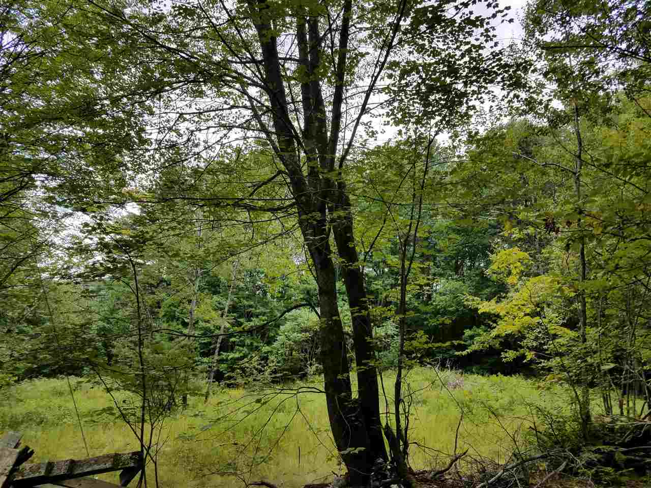 Lempster NH 03605 Land for sale $List Price is $23,000