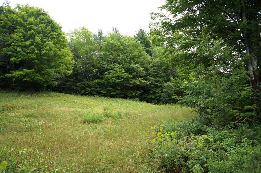 ALSTEAD NH LAND  for sale $$75,000 | 16.61 Acres  | Price Per Acre $0  | Total Lots 2