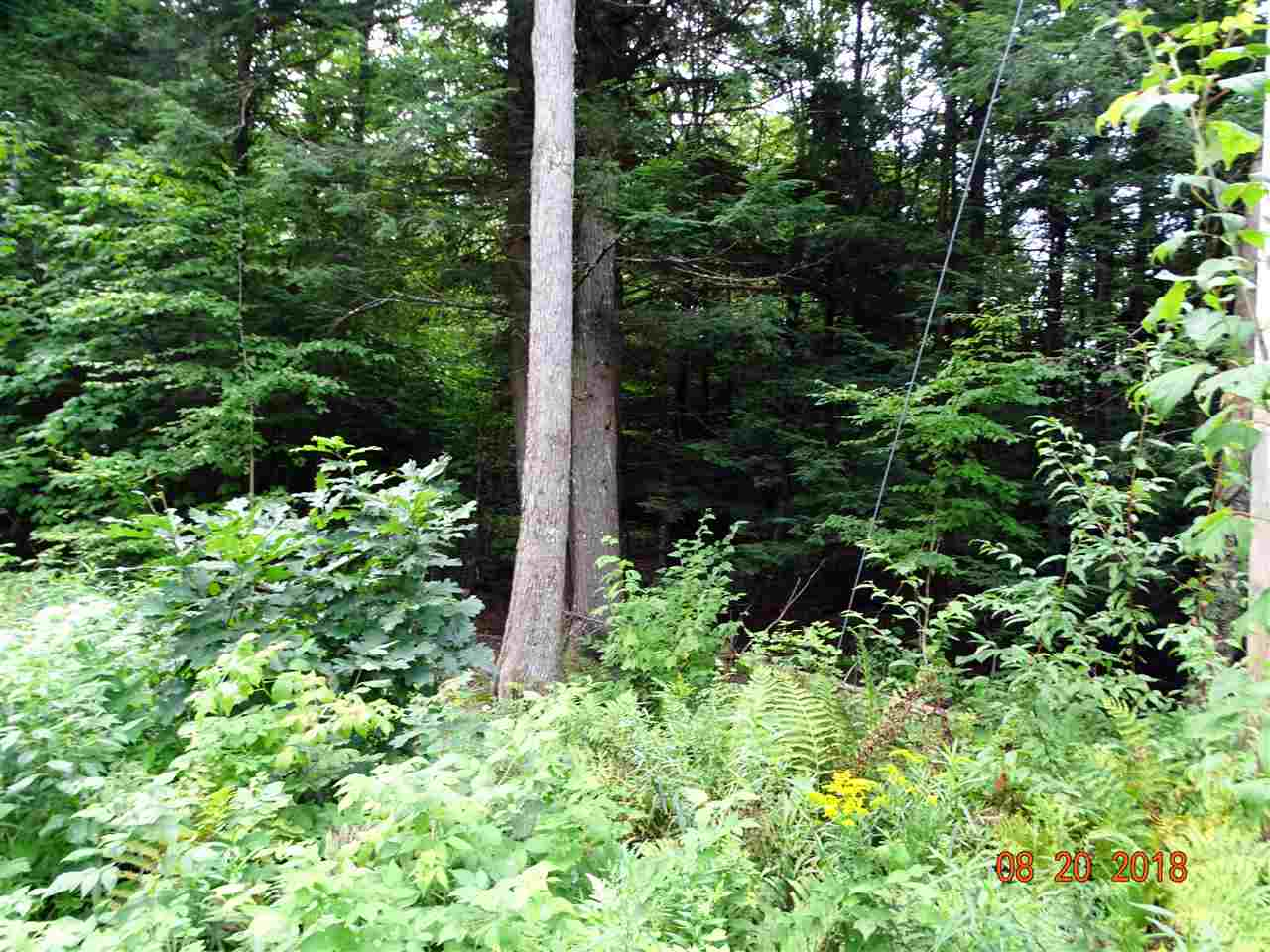 Lempster NH 03605 Land for sale $List Price is $27,000