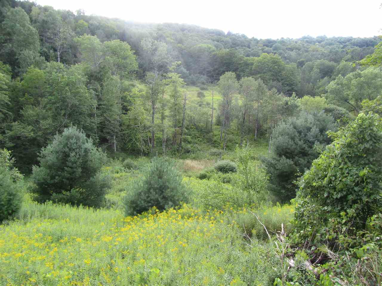 Tunbridge VT Land  for sale $List Price is $160,000