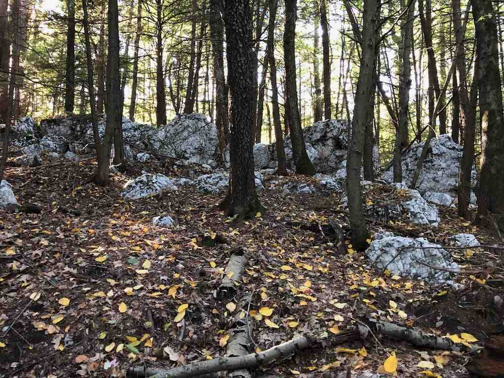 WESTMINSTER VTLAND  for sale $$41,000 | 10.5 Acres  | Price Per Acre $0  | Total Lots 3