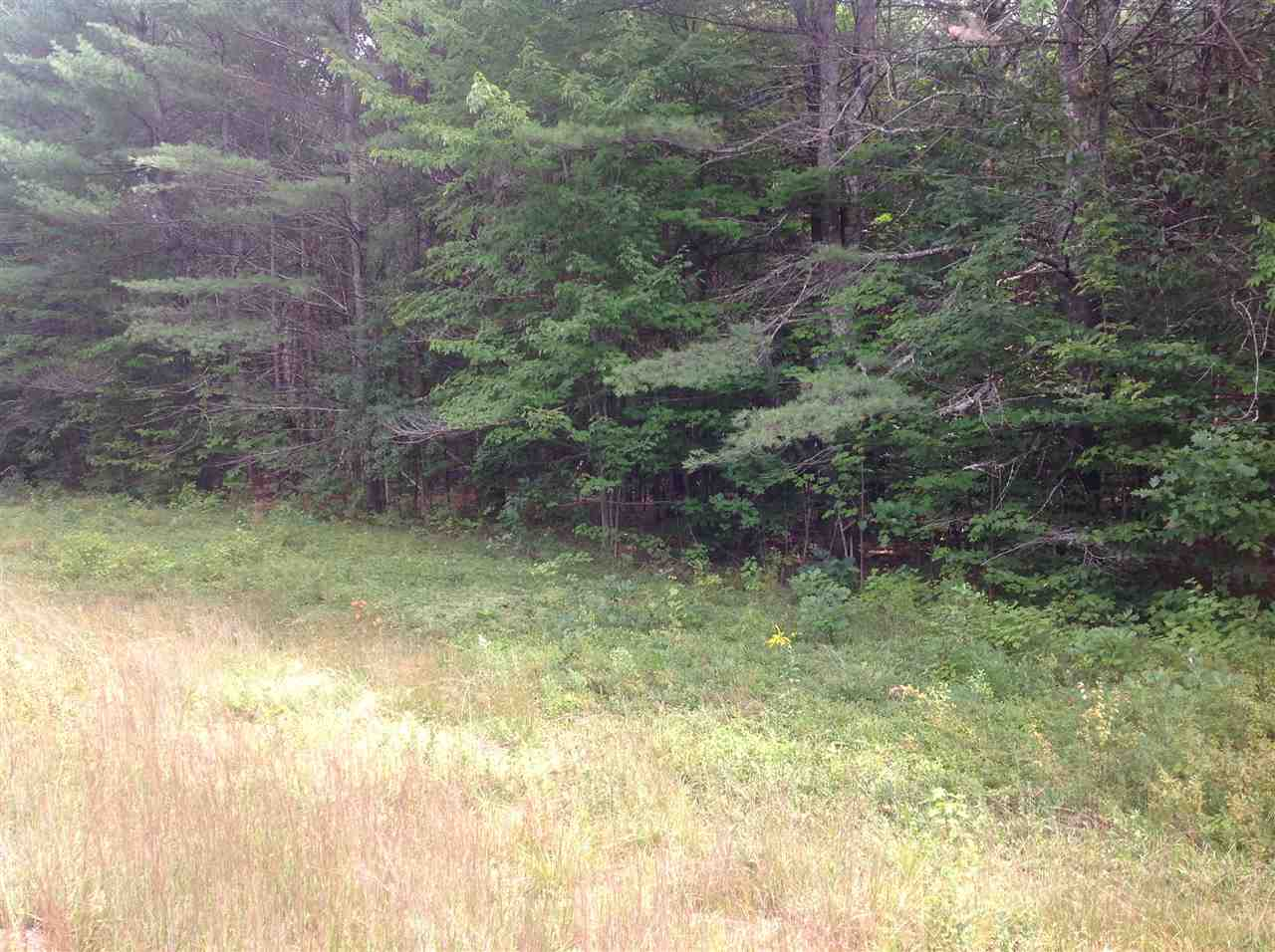 OSSIPEE NH LAND  for sale $120,000