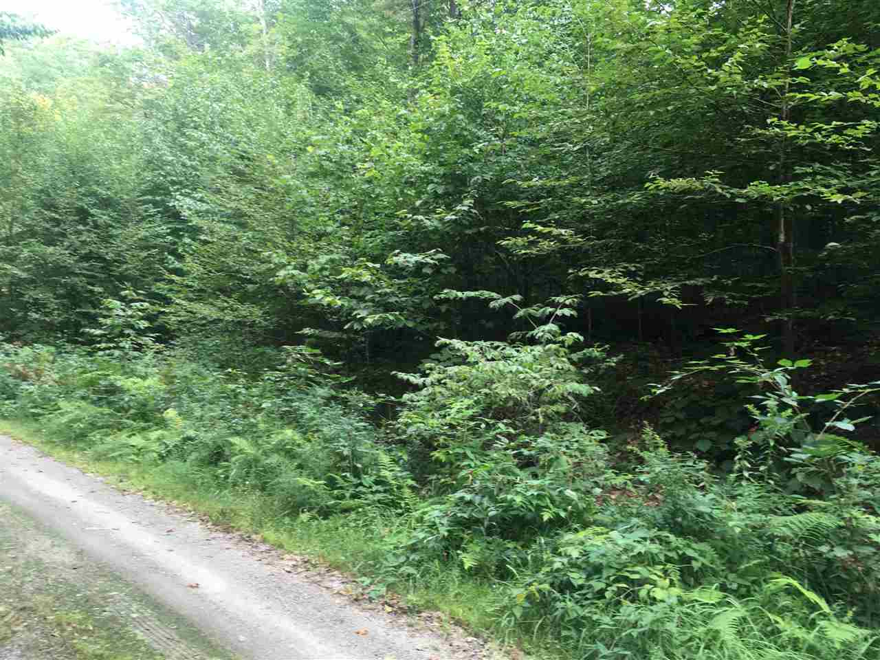 Reading VT 05062Land for sale $List Price is $39,000