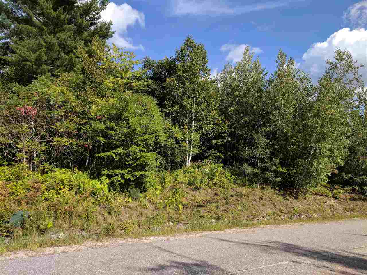 Sunapee NH 03782 Land for sale $List Price is $48,500