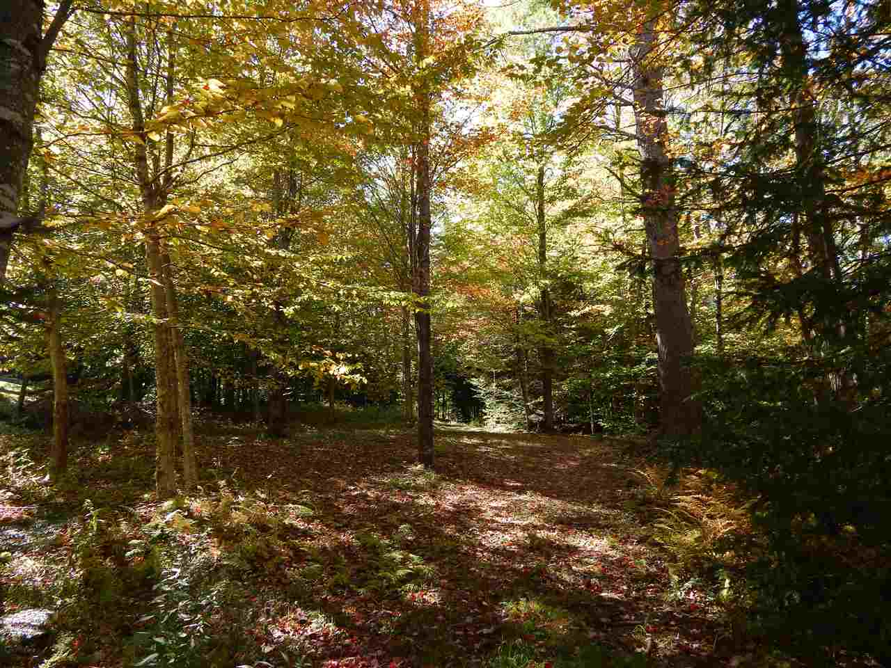 Newbury NH 03255 Land for sale $List Price is $49,500
