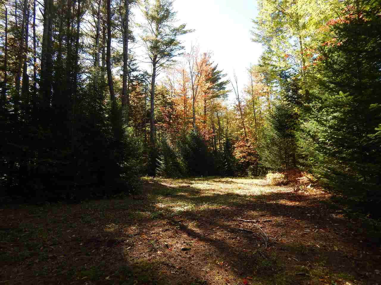 Newbury NH 03255 Land for sale $List Price is $42,500