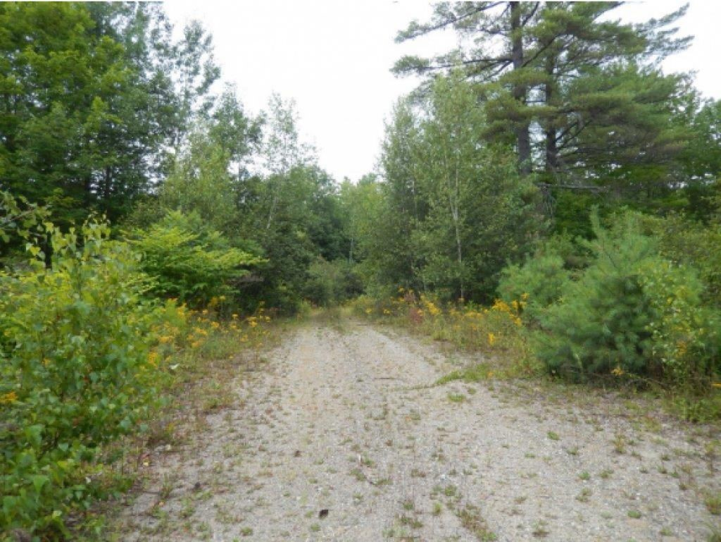 Road on property 12645852