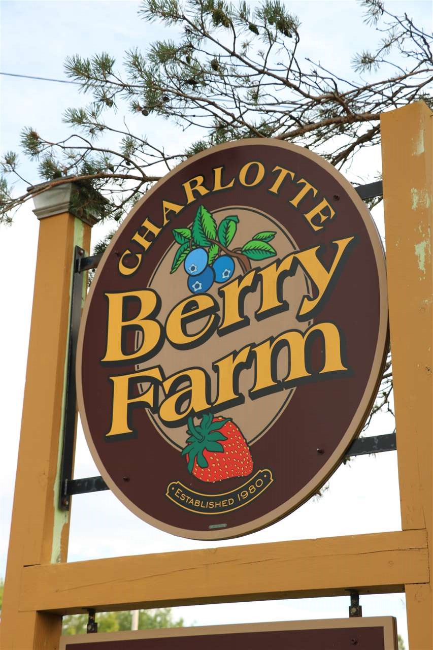 Welcome to the Charlotte Berry Farm.  Established in 1980, this continuously operated farm on over 56 acres of conserved scenic land features acres of mature blueberries, fields of raspberries and grows pumpkins each year.  The farm is also host to Champlain Valley Apiaries.  The farm stand offers a variety of products produced on the farm, seasonally flavored soft serve ice cream and you-pick berries.  The farm is an attraction for both tourism and the local community, conveniently located on Route 7, with high traffic exposure, visible road frontage and close proximity to Burlington and Middlebury.    A log home on the property is currently being used for rental income and can be easily converted into a duplex.  There is also a designated building lot on the property.   The property includes the farm stand, outbuildings used for farm equipment, a tool shed and office space.  A brand new irrigation system was installed and draws water from two ponds on the property.  All farm equipment, inventory and supplies will be included in the sale.  The Vermont Land Trust has agreed to allow up to 6 wedding events be held at the farm each year.