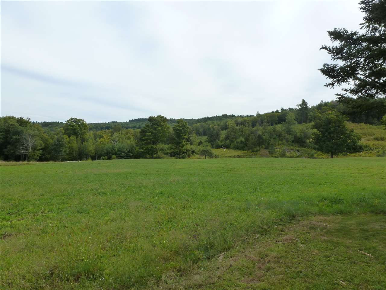ALSTEAD NH LAND  for sale $$279,000 | 96 Acres  | Price Per Acre $0