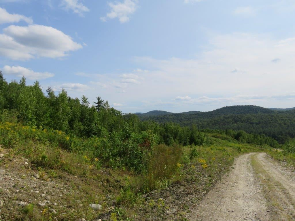 GRAFTON NH LAND  for sale $$45,000 | 16.45 Acres  | Price Per Acre $0  | Total Lots 2
