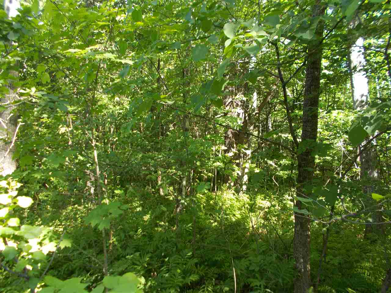 Claremont NH 03743Land for sale $List Price is $69,900