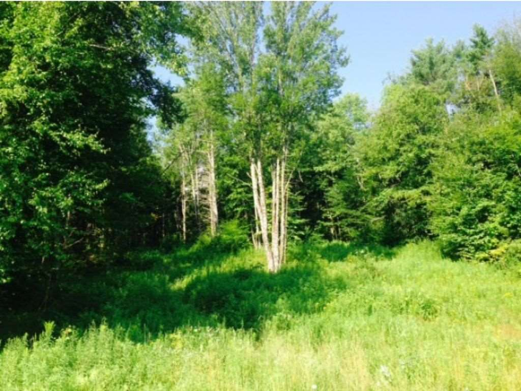 Claremont NH 03753 Land for sale $List Price is $24,900