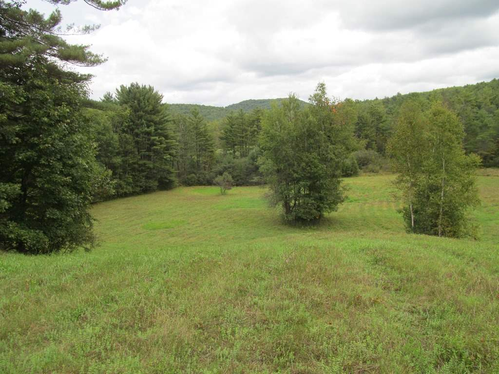 CORNISH NH LAND  for sale $$149,000 | 30.2 Acres  | Price Per Acre $0