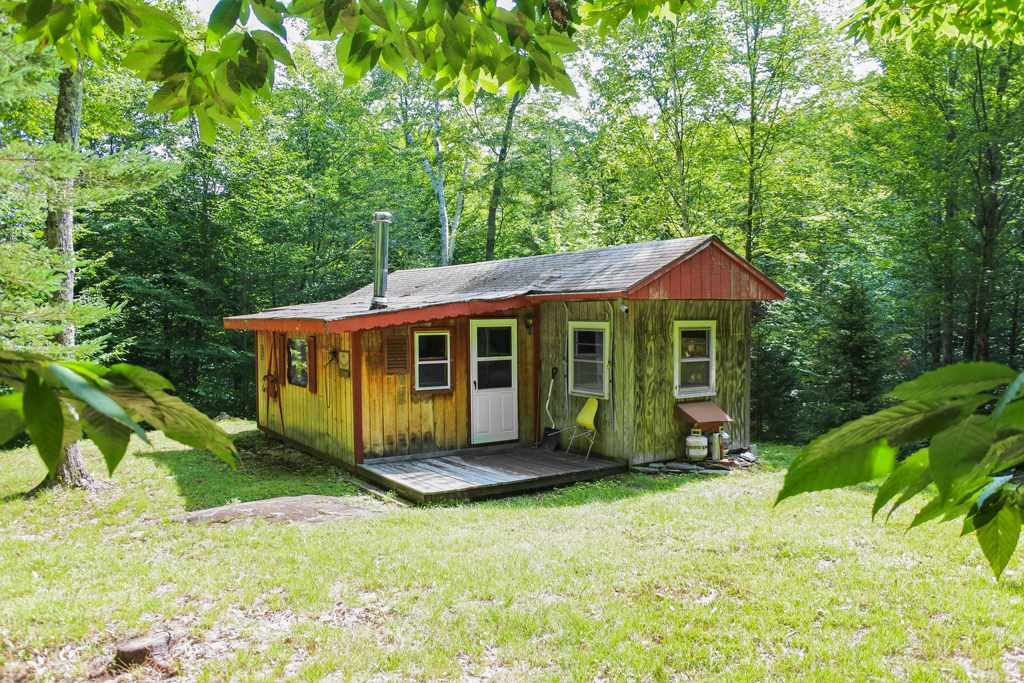 MOUNT HOLLY VT Home for sale $$55,000 | $124 per sq.ft.