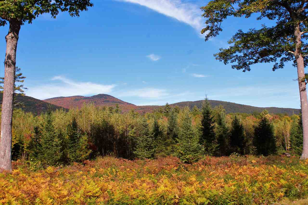 VILLAGE OF MELVIN VILLAGE IN TOWN OF TUFTONBORO NH LAND  for sale $129,900