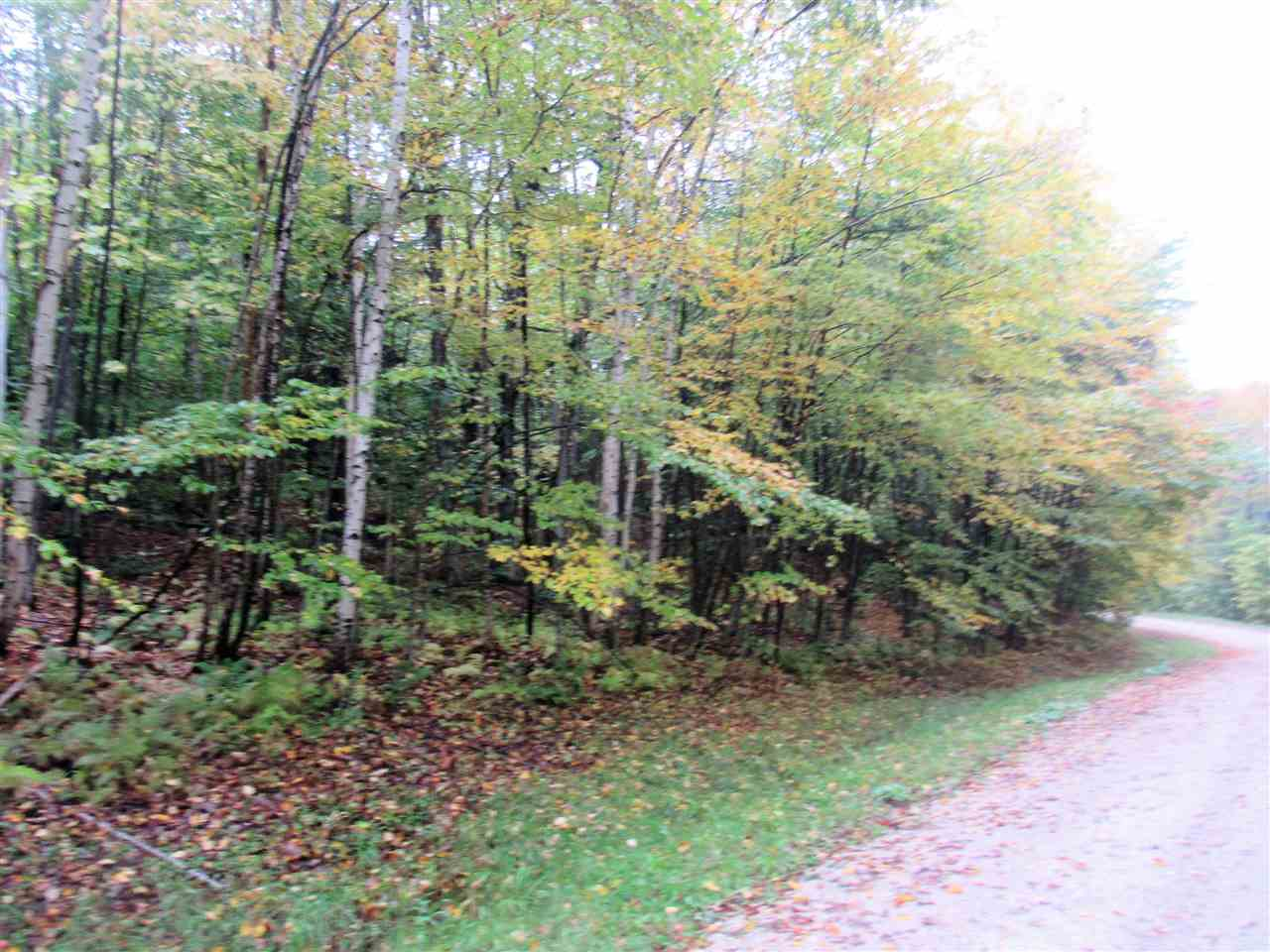 Plymouth VT Land  for sale $List Price is $15,900