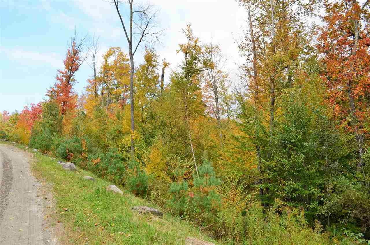 Plymouth VT Land  for sale $List Price is $75,000