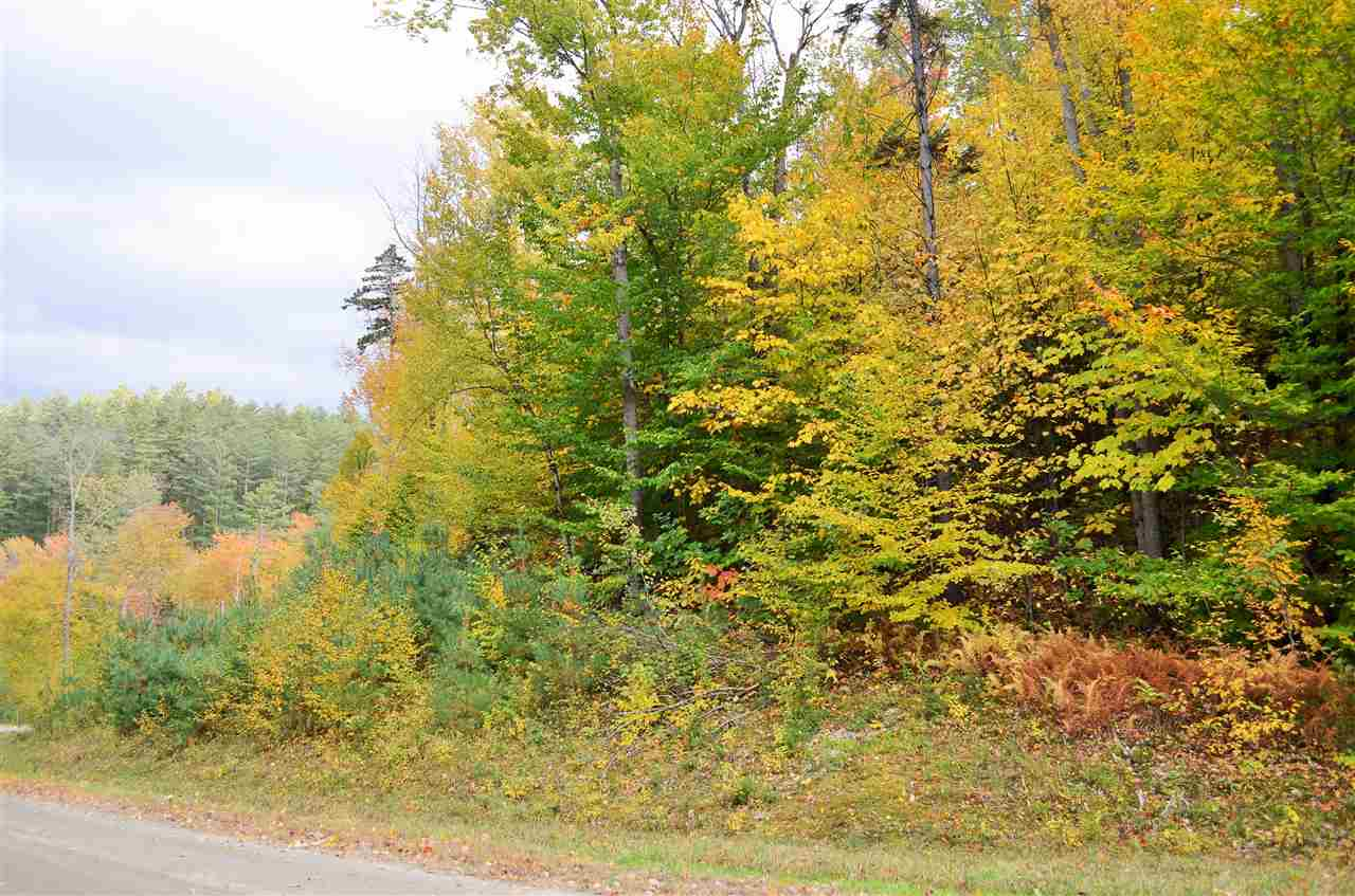 PLYMOUTH VTLAND  for sale $$50,000   3.15 Acres    Price Per Acre $0
