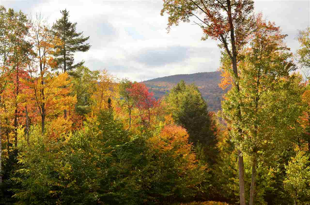 Plymouth VT Land  for sale $List Price is $69,000