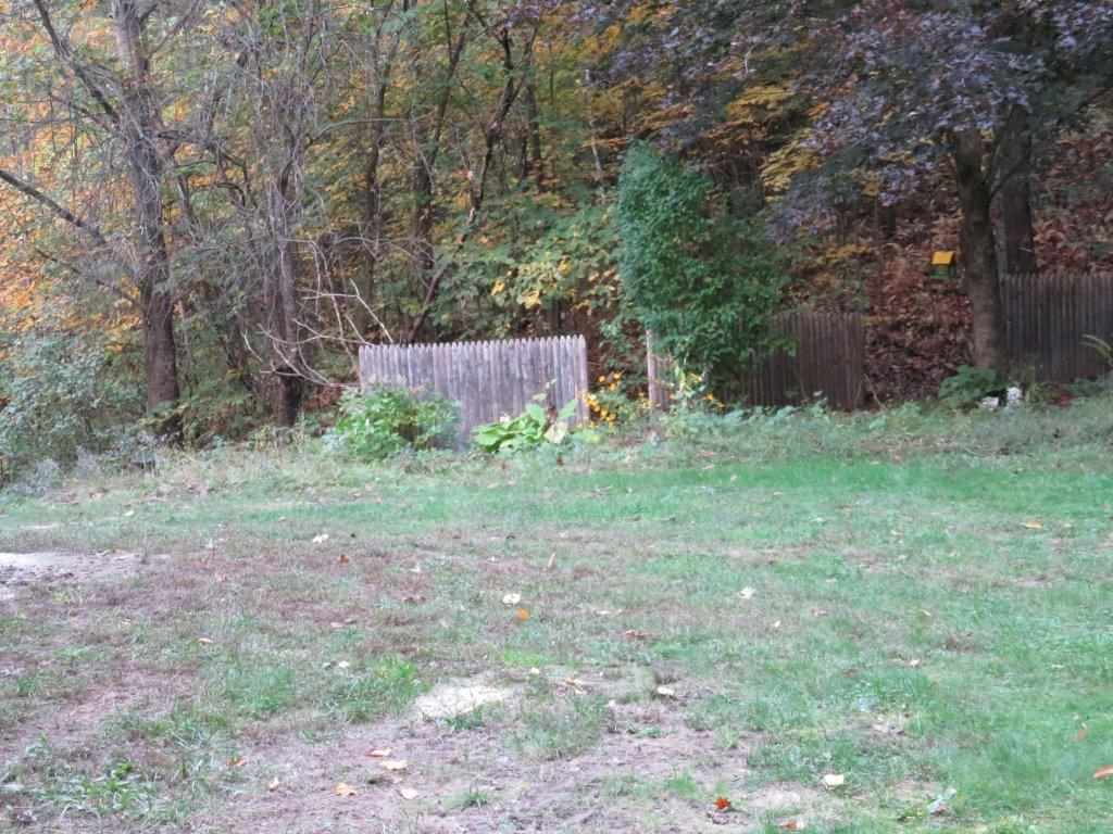 Great Private Back Yard 12800196