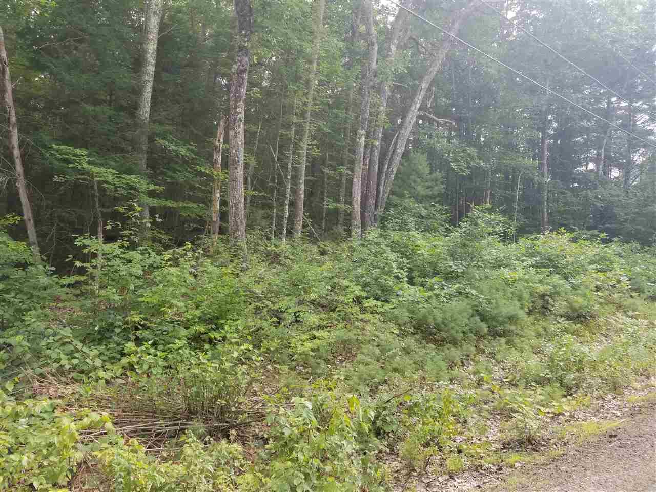 MLS 4723603: Lot 34a Forest Pond, New Hampton NH