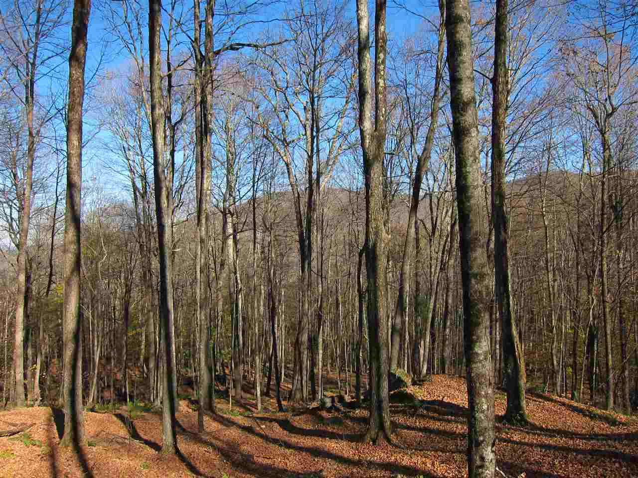 Reading VT 05062Land for sale $List Price is $125,000
