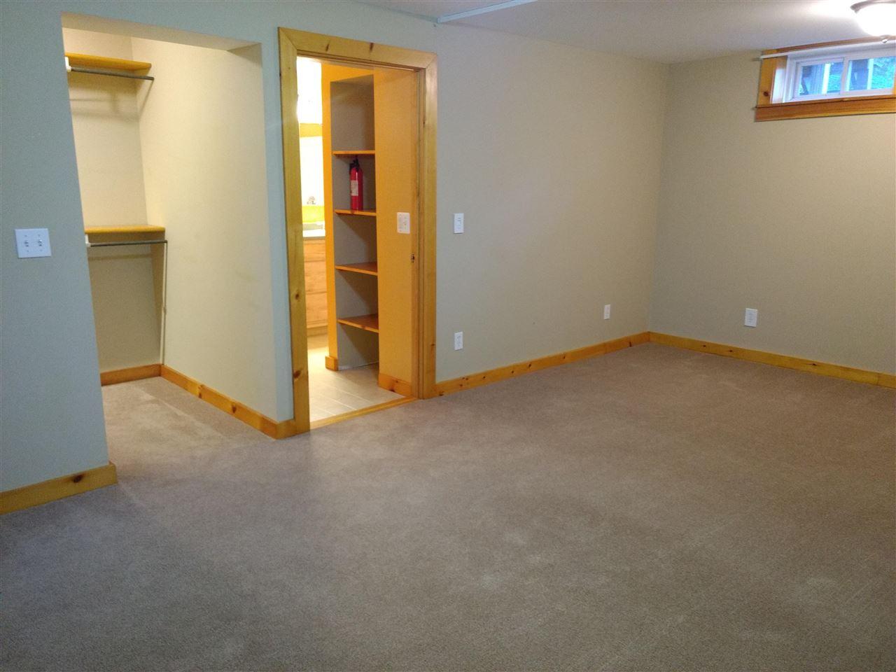 Lower Level Bonus Room 12882542