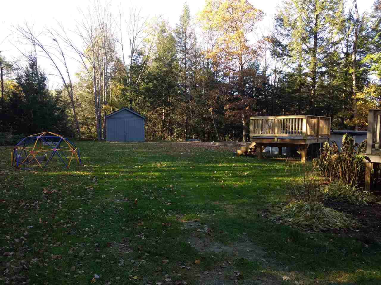 Backyard 12882527