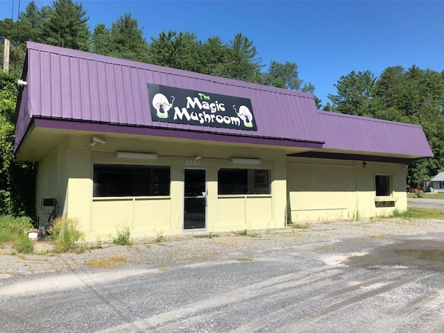 VILLAGE OF ASCUTNEY IN TOWN OF WEATHERSFIELD VT Commercial Property for sale $$120,500 | $63 per sq.ft.