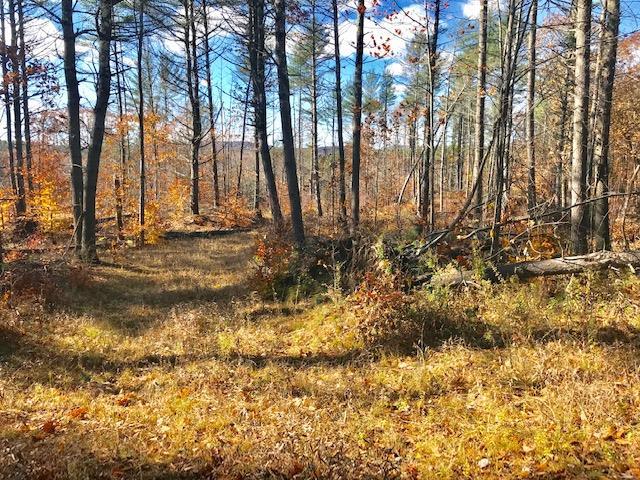 GILMANTON NH LAND  for sale $62,000